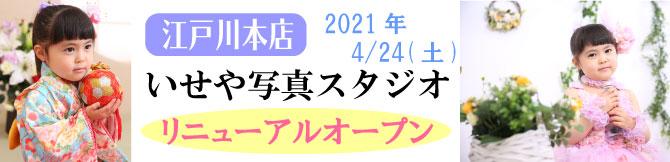 江戸川本店 いせや写真スタジオ リニューアルオープン 4/24(土) 振袖 七五三 卒業袴 男性袴